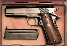 Pistorius gun ownership
