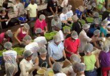 Volunteers to package 822000 meals on Mandela Day