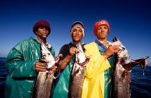 South Africa's linefish stocks show recovery