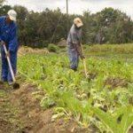 R3bn for rural development