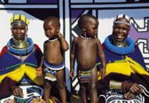 Les experiences de voyage en Afrique du Sud