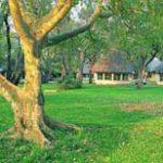 Land claimants eye eco-tourism