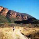Big Five Marathon a wild challenge