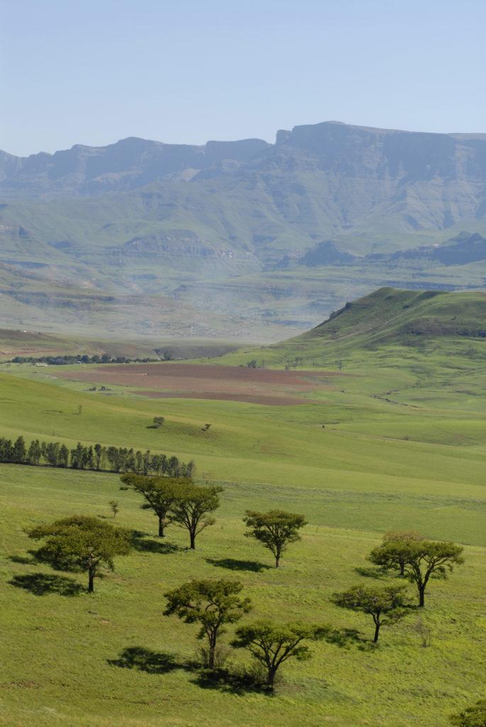 The Central Drakensberg, KwaZulu-Natal