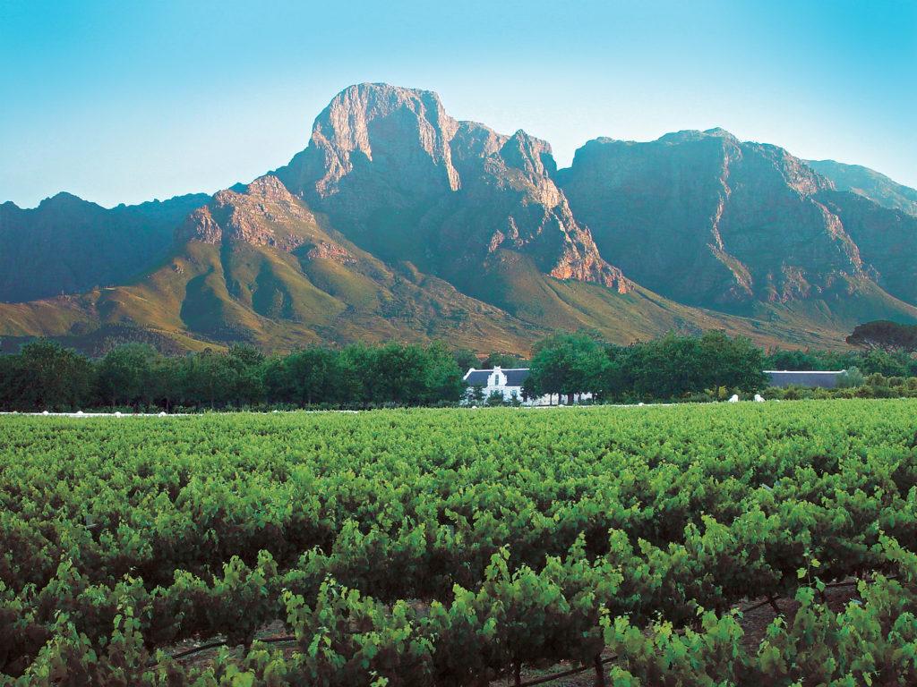 Western Cape province: Boschendal Wine Estate near Franschhoek