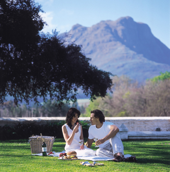 A picnic at Blaauwklippen Wine Estate