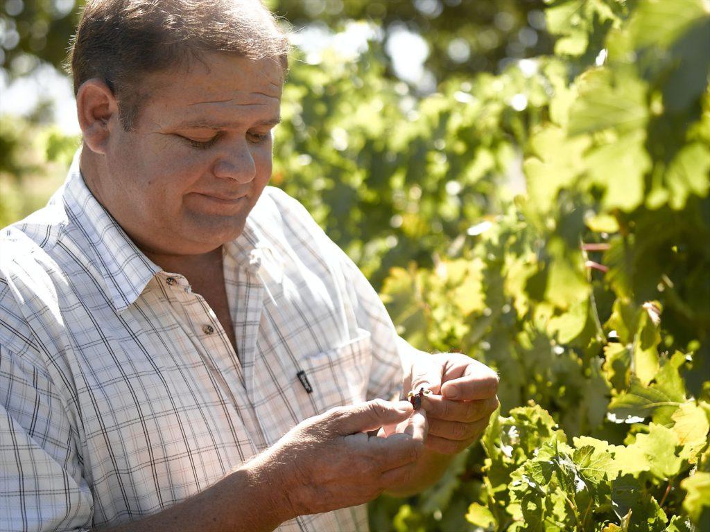 Danie Malan, the winemaker at Allesverloren Wine Estate in the Swartland region