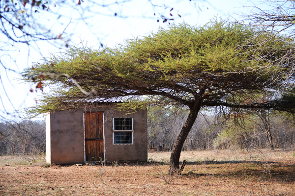 whitelions-shack