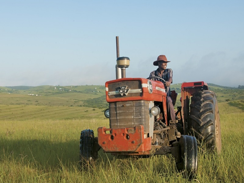 rural farmers buhle farmers academy