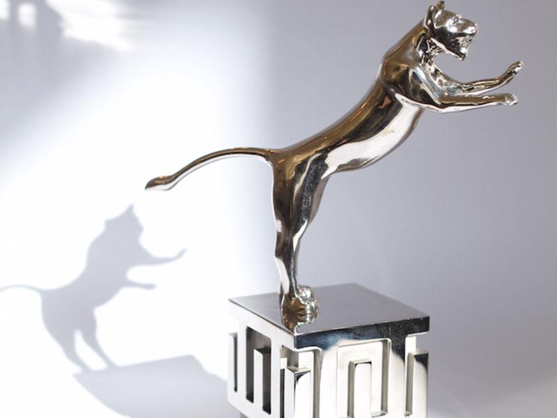 Rapid Lion 2017