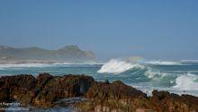 Cape Point National Park.